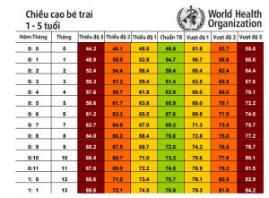 Theo dõi bảng tiêu chuẩn chiều cao cân nặng của bé theo WHO năm 2019
